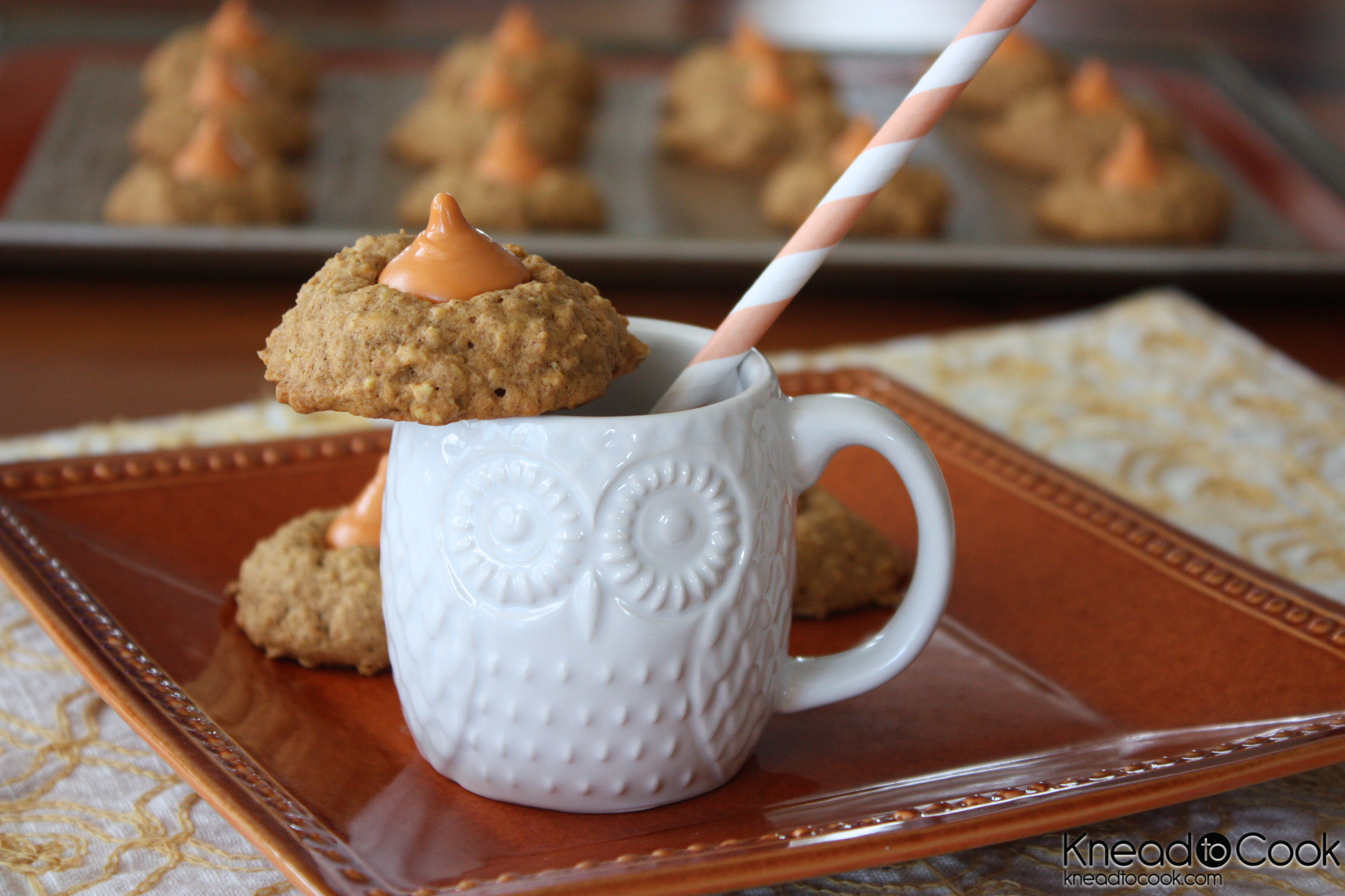 Pumpkin Spice Oatmeal Cookies. - Knead to Cook