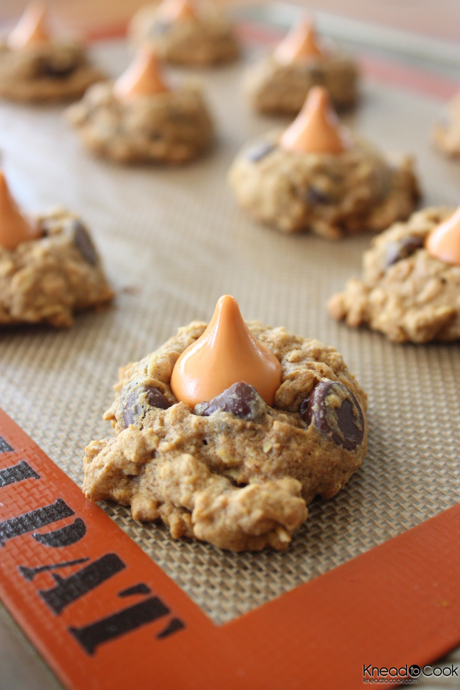 Spiced Pumpkin-Oatmeal Cookies Recipe — Dishmaps
