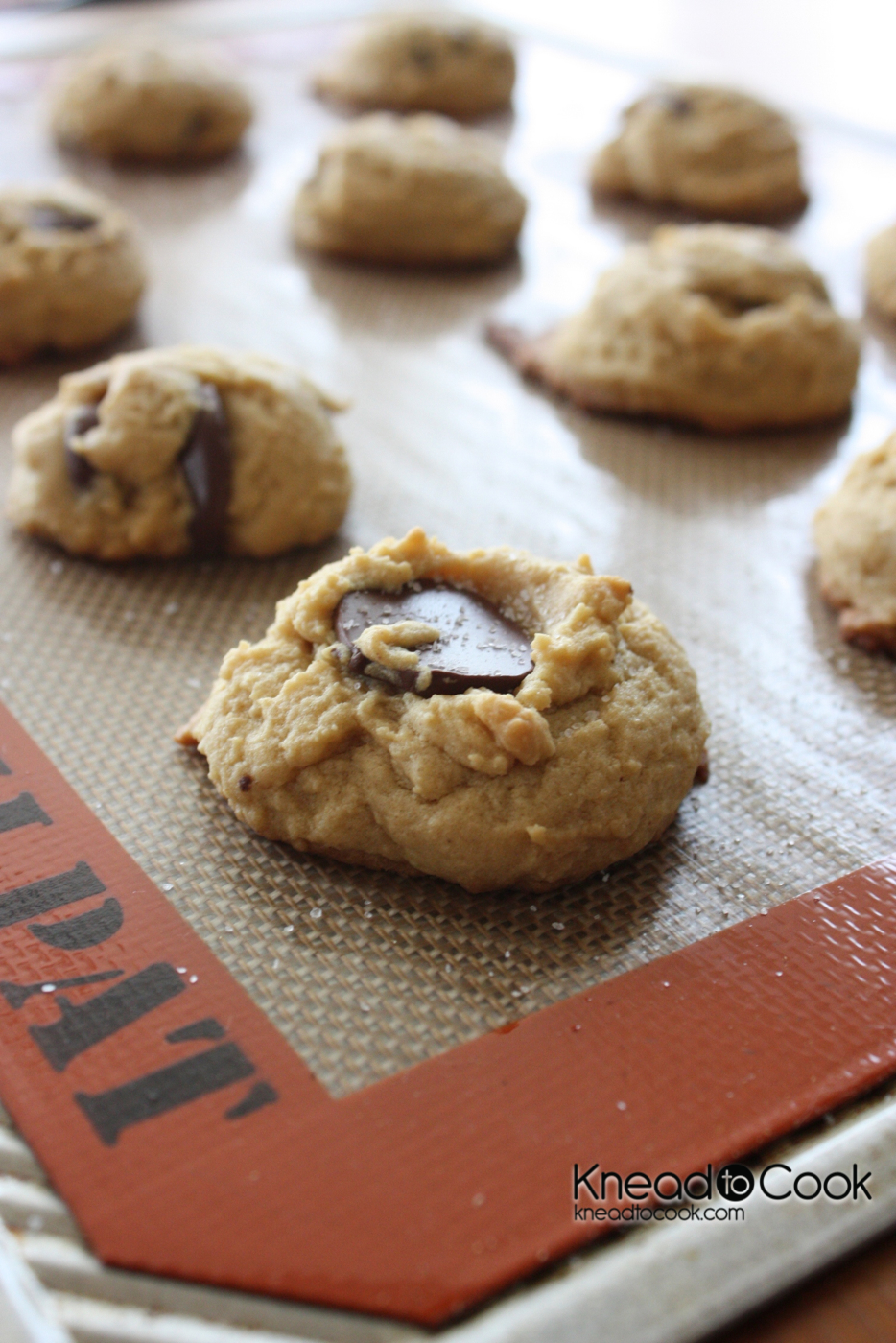 Sea Salt topped Peanut Butter Chocolate Chip Cookies ...