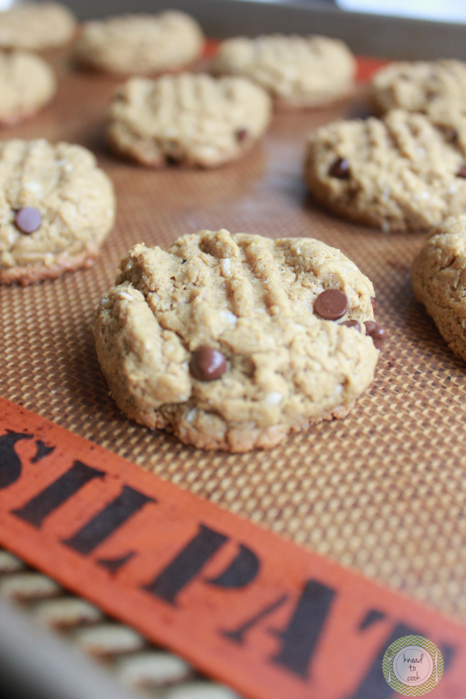 Almond butter chocolate chip oat cookies. Gluten free. - Knead to Cook