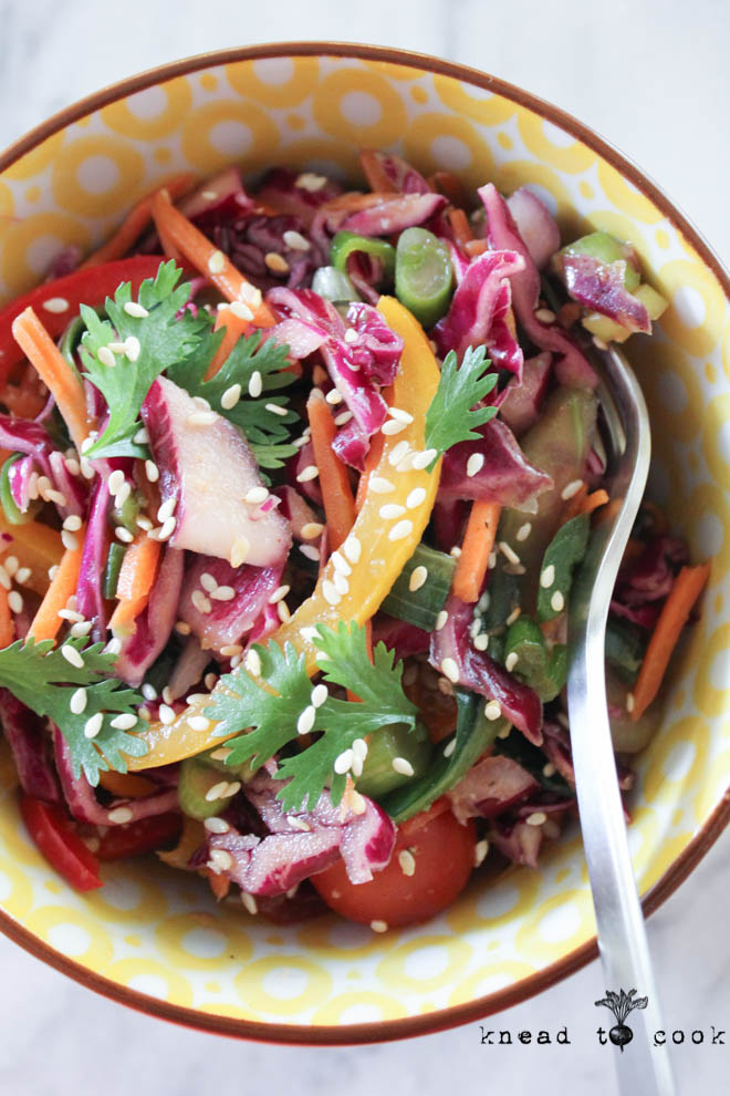 Raw Veggie Slaw with a Cilantro Lime Vinaigrette. Vegan.