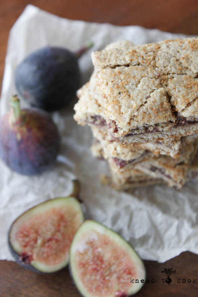 Fresh Fig Newtons Cookies. Vegan. Gluten Free.