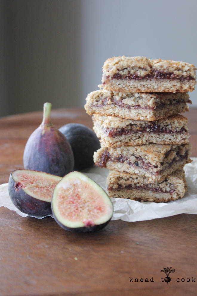 Gluten-Free Fig Cookies (a La Fig Newtons) Recipes — Dishmaps