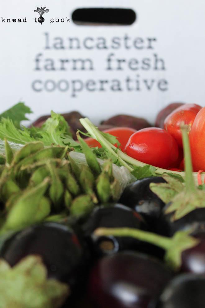 Lancaster Farm Fresh.  Farm Co-Op operations.