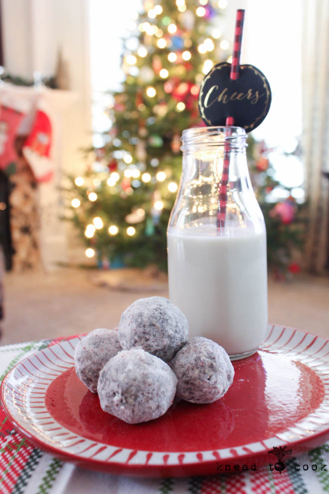 Peppermint Cacao Energy Bites. Vegan. GF.
